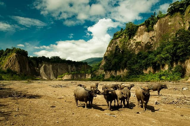 tempat wisata di bukittinggi ngarai sianok