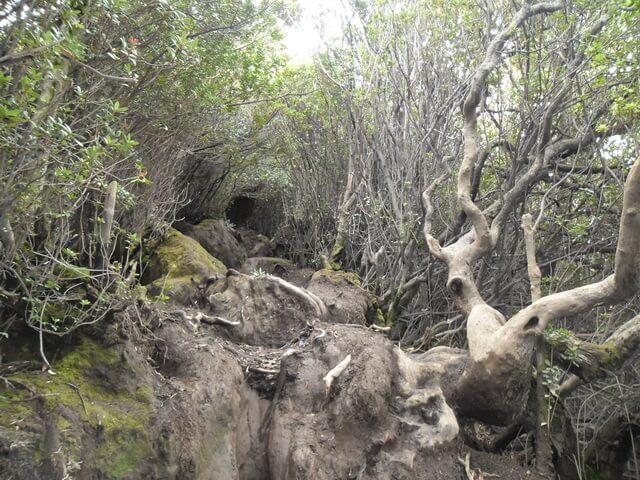 jalur pendakian sulit gunung kerinci