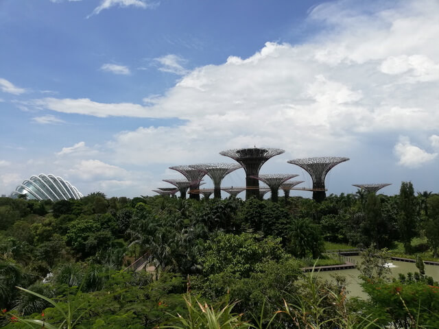 Super Tree gardens by the bay SIngapore